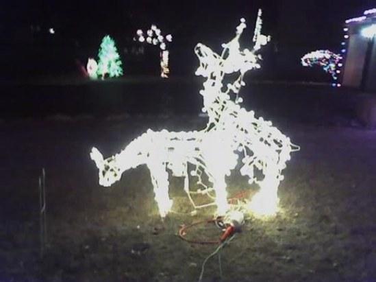 reindeer_lawn_art_prank_Christmas_funny_humor_cool_haha_lol_rofl_smiles